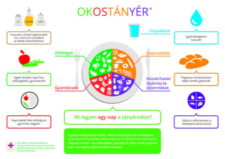 okostanyer-2-768x543
