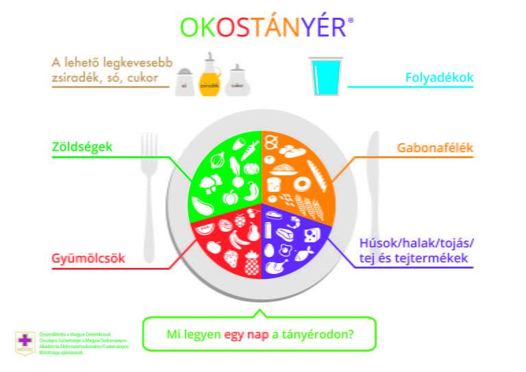 okostanyer-768x543